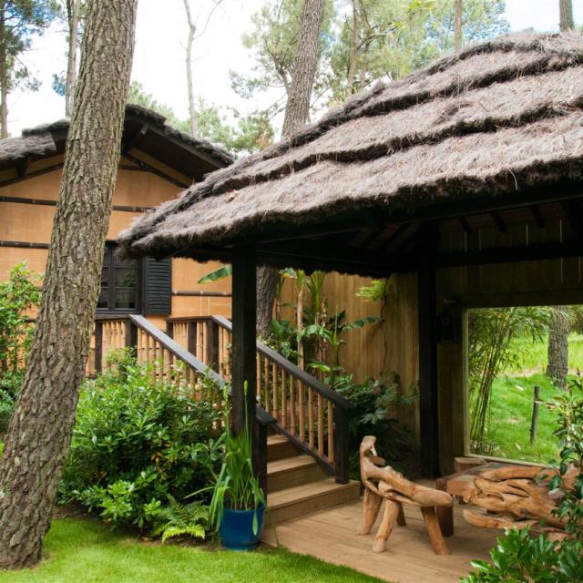 Safari Lodge Zoo De La Flèche (1)
