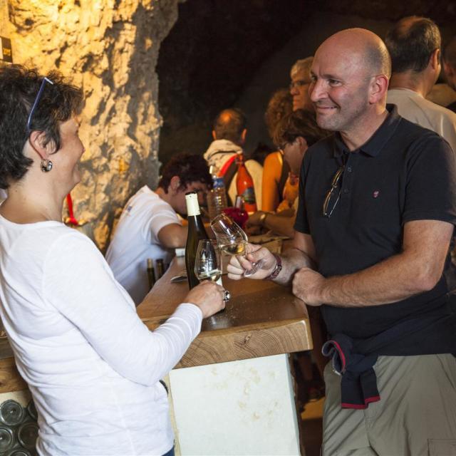 Vignes et vins côteaux-du-Loir